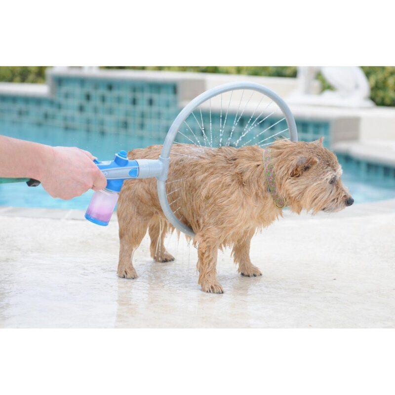 πλύσιμο σκύλου